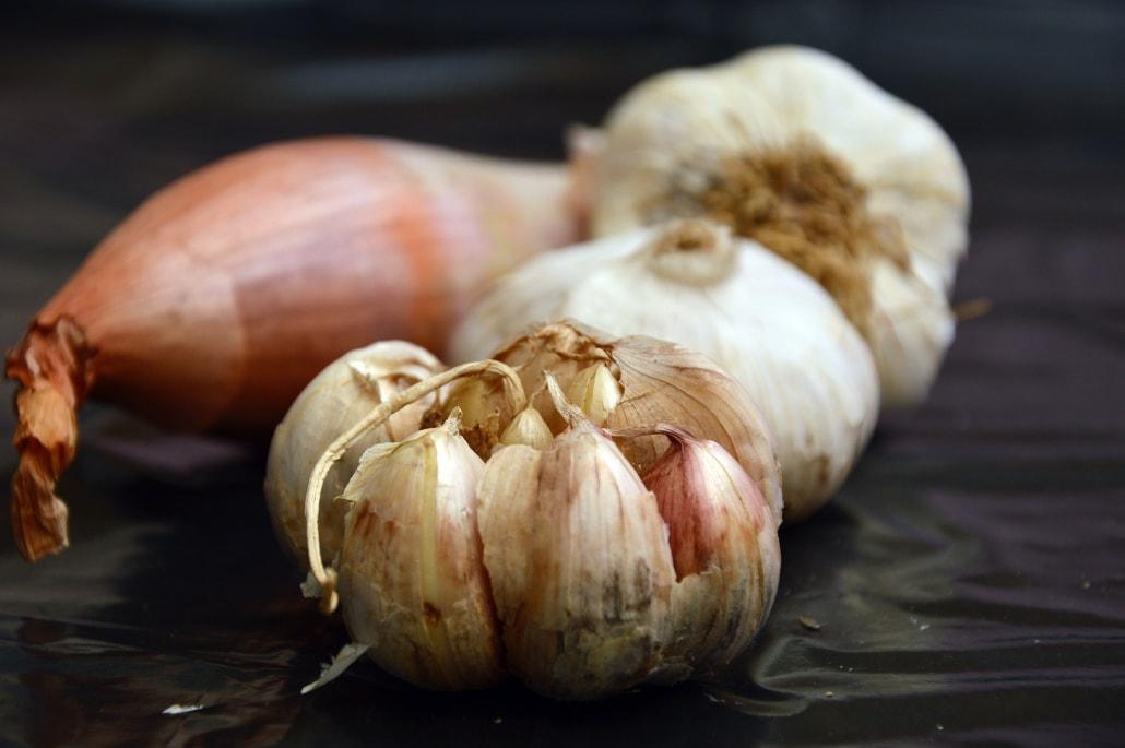 aglio cipolla